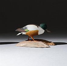 MINIATURE SHOVELER DRAKE By Harold Gibbs of Barrington, Rhode Island. Wings raised. Mounted on a driftwood base. Signed on underside...