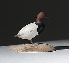 MINIATURE CANVASBACK DRAKE By Harold Gibbs of Barrington, Rhode Island. In standing form on a driftwood base. Signed on underside of...