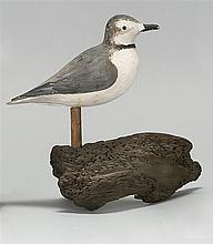 LIFE-SIZE PIPING PLOVER DECOY By Alvin A. White of Sandwich, Massachusetts. Glass eyes. Mounted on a driftwood base. Signed under ta...