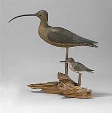 TWO LIFE-SIZE DECOYS A curlew and a sanderling, both by Alvin A. White of Sandwich, Massachusetts. Both with glass eyes and mounted...