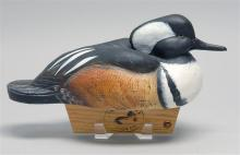 HOODED MERGANSER DRAKE DECOY By Robert Mitchell of Oneida Lake Decoy Company. Glass eyes. Cork body. Signed on underside