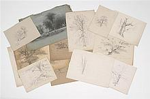 BENJAMIN CHAMPNEY, American, 1817-1907, Fifteen tree studies, Mixed media on paper, sizes vary. Unframed.
