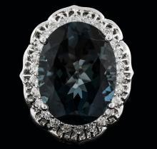 14KT White Gold 19.87 ctw Topaz and Diamond Ring
