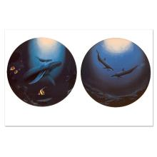 Innocent Age/Dolphin Serenity by Wyland