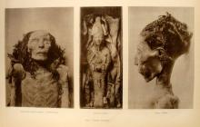3 portfolios + 1 vol. Egyptology: Borchardt, Ludwig. Works of Art from the Egyptian Museum at Cairo. Cairo: Diemer;...