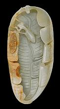 Chinese celadon jade carving of mantis and leaf, 19th century, Finely carved as a curling plantain leaf with a mantis and a circada; ro