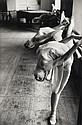 INGE MORATH, (AUSTRIAN/AMERICAN, 1923-2002),