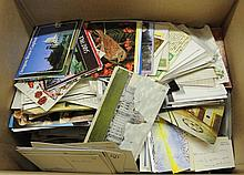 (1000)+ Misc. U.S. & Foreign Postcards