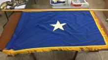 Lone star/ Bonnie blue flag and flag pole. Pole is