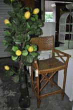Bar Stool and Lemon Tree