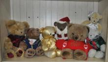 Collection of Bears with 2 Books