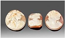 Victorian Good Quality Shell Cameos, 3 in total.