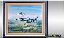 Terry Harrison 'In Flight' Jaguar GRI XZ387/DW no