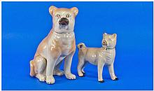 Two Mid 19th Century Pug Dogs. One 9 inches tall
