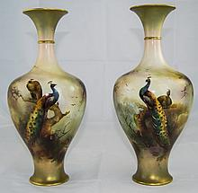 Royal Worcester Pair of Fine Hand Painted Vases 'P