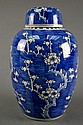 Antique Chinese Prunus Jar