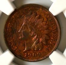 1909 Indian Head Cent NGC UNC Details E/D