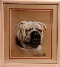 Pastel Portrait of a Bull Dog
