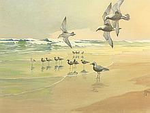 Oil on canvas of shorebirds, Francis L. Jaques.