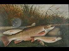 Oil on board of brook trout and fishing equipment by stream, Harry Smith.
