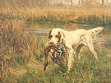 A setter with mallard hen, an oil on canvas by Percival Leonard Rosseau.