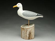 Standing gull on wooden base, Harry V. Shourds III.