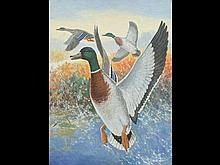 Mallards rising, attributed to Reginald F. Bolles (1877-1967), oil on canvas.