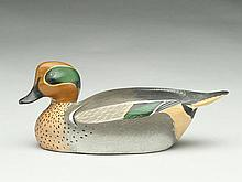 1/3 size greenwing teal drake, Ward Brothers, Crisfield, Maryland.