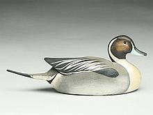 1/3 size pintail drake, Ward Brothers, Crisfield, Maryland.