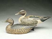 Exceptional pair of oversize pintails, Elmer Crowell, East Harwich, Massachusetts, 1st quarter 20th century.