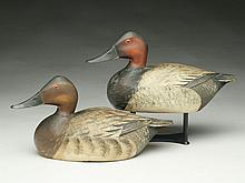 Pair of canvasbacks, Elmer Crowell, East Harwich, Massachusetts.