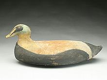 Large hollow carved eider drake from the central Maine coast.