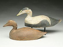 Very rare rigmate pair of eiders, Phineas Alexander, Smalls Point, Maine, last quarter 19th century.