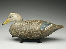 Fine black duck, Ira Hudson, Chincoteague, Virginia, circa 1920s.