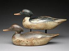 Very rare rigmate pair of American mergansers, Mason Decoy Factory, Detroit, Michigan.