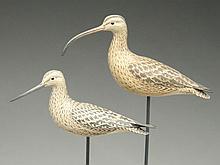 Two miniature shorebirds, Eddie Wozny Cambridge, Maryland.