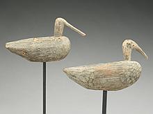 Pair of root head shorebirds, from Long Island, New York or North Carolina.