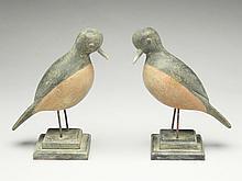 Pair of songbirds, Reggie Birch, Chincoteague, Virginia.