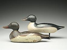 Rare rigmate pair of American merganser, Hays Decoy Factory, Detroit, Michigan.