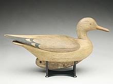 Hollow carved gull,  Mark McNair, Craddockville, Virginia.