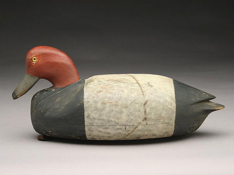 Important redhead drake, Elkanah Cobb, Cobb Island, Virginia, last quarter 19th century.