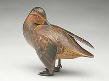 Standing greenwing teal, Duffy Lawson, Crisfield, Maryland, circa 1920s.