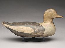 Old squaw hen from Massachusetts, last quarter 19th century.