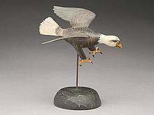 Miniature flying bald eagle, Roy Conklin, Alexandria Bay, New York.