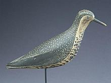 Golden plover from the Morton rig, Quincy, Massachusetts, last quarter 19th century.