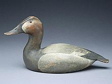 Classic 1936 model canvasback hen, Ward Brothers, Crisfield, Maryland.