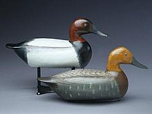 Rare rigmate pair of late canvasbacks, Charles Perdew, Henry, Illinois.