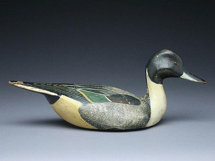 Rare pinch breast style pintail drake, Ward Brothers, Crisfield, Maryland.