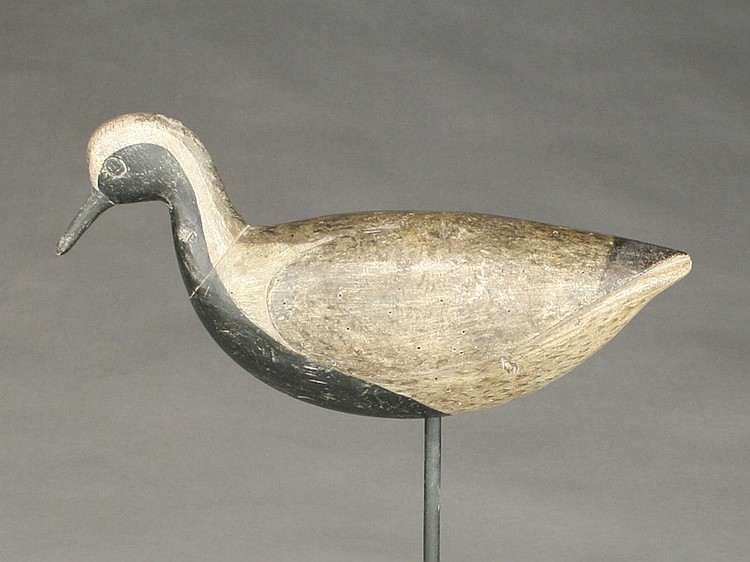 Large blackbellied plover carved in the Cobb Island, Virginia style, Cameron McIntyre.