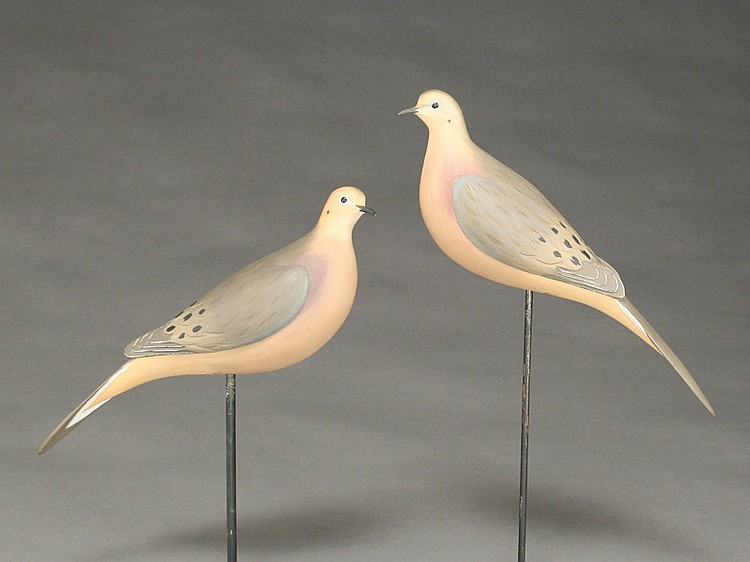 Pair of morning doves, Eddie Wozny, Cambridge, Maryland.